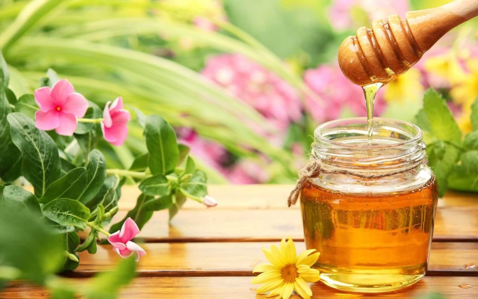 Trẻ đẹp lại với công năng của mật ong mà ai cũng biết -  trẻ đẹp lại với công năng của mật ong - 3 meo lam dep toan dien cung mat ong