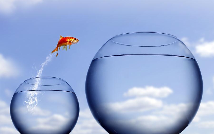 Để con biết kĩ năng tự phục vụ mình và tự giác sẽ tạo những giá trị mới tốt hơn -   - th  nh c  ng1