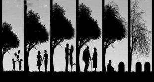 Cuộc đời mỗi con người chỉ ngắn gọn trong một câu -   - SINH L  O B   NH T    310x165