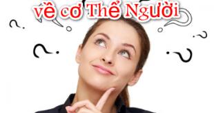 Top 10 câu hỏi vì sao về cơ Thể Người -   - Top 10 c  u h   i v   sao v    c   Th    Ng     i 310x165