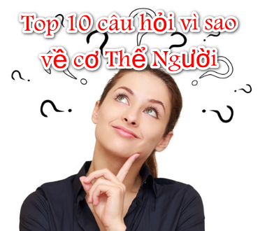 Top 10 câu hỏi vì sao về cơ Thể Người -   - Top 10 c  u h   i v   sao v    c   Th    Ng     i 372x330