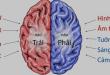 Hiểu về não của mình -   - b    n  o 110x75