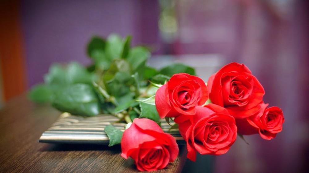 Ở đâu có tình yêu, ở đó có sự sống -   - hoa h   ng