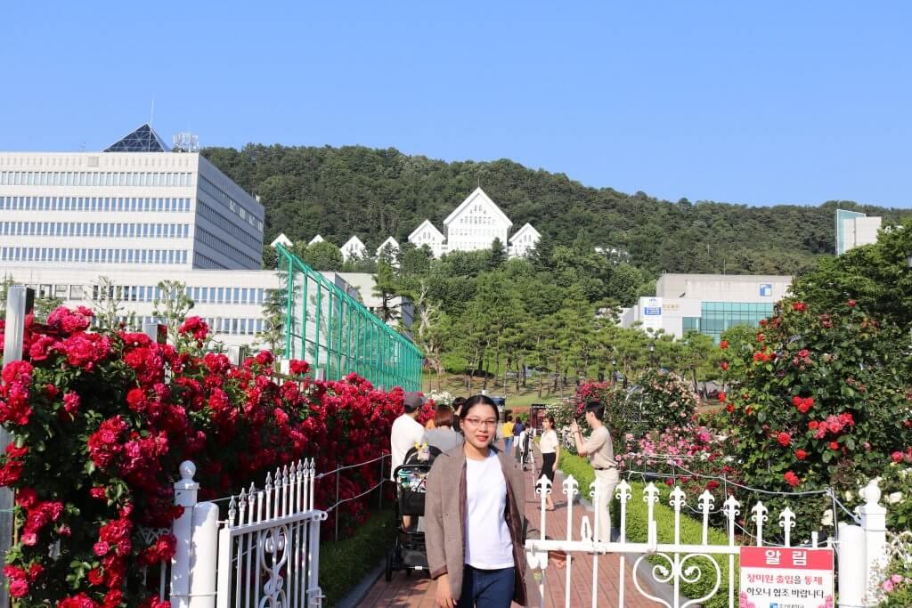 Cho một mùa hè thật xanh -  mùa hè hàn quốc - bichkhoa blog 1024x683